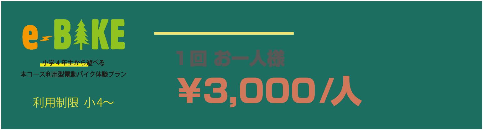 e-BIKE 対象年齢15歳〜 1人2000円